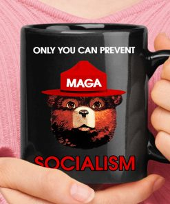 Only You Can Prevent Socialism